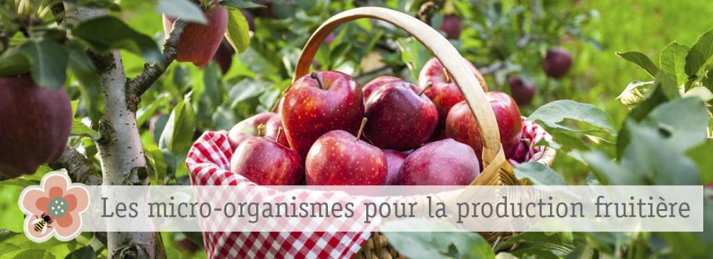 production fruitière